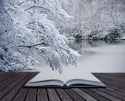 A Winter Read