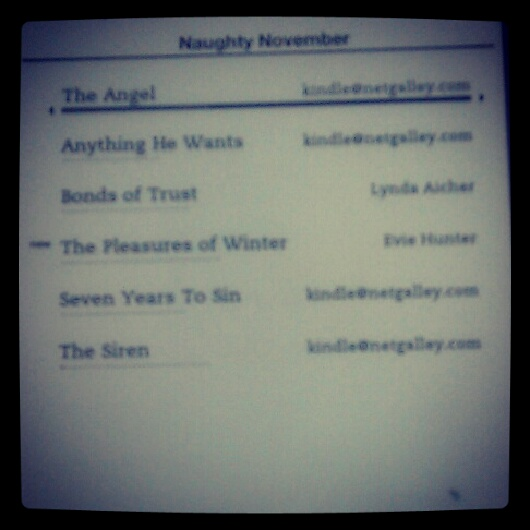 Naughty November Ebook Readsmy