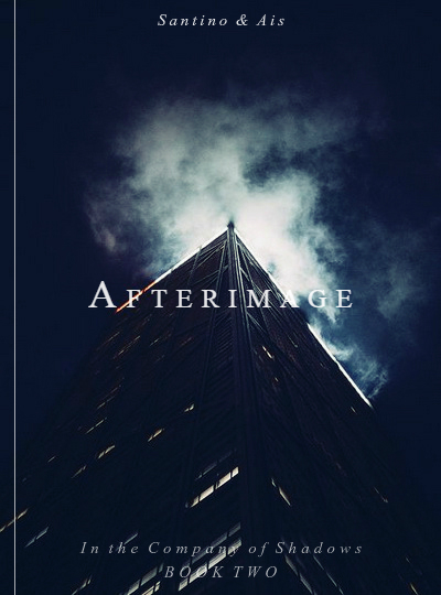 """Afterimage"" fanmade book cover"