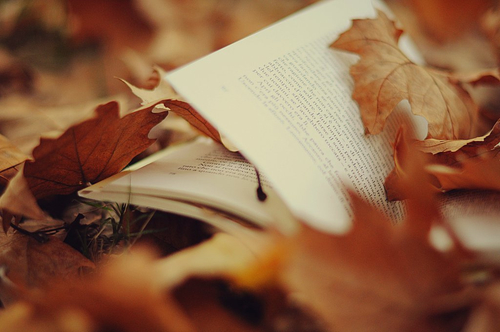 #autumn leaves #pages