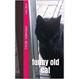 Funny Old Cat by Miranda Beall