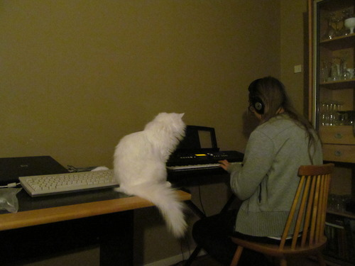Sepideh helping daughter play keyboard