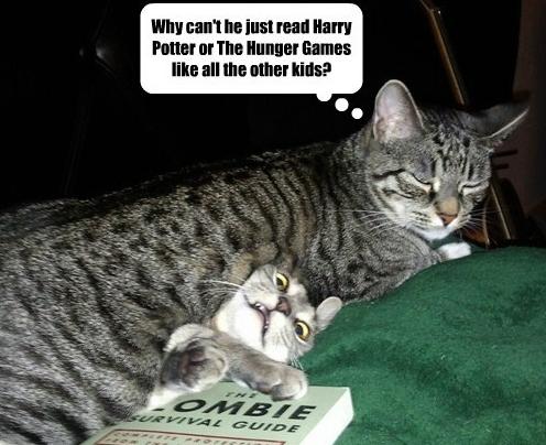 Zombie kitten!