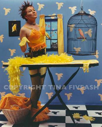 Birds of a Feather, from Pet perversions 1993, Tina Fiveash