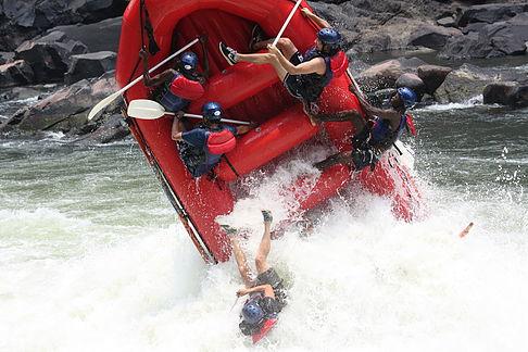 Plan to Tour operator in Victoria Falls