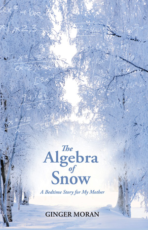 paperback cover the algebra of snow
