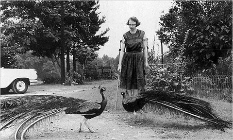 Flannery O'Connor and her peacocks - her biggest life hobby