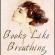 Books Like Breathing