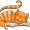 Cat's Books: Romance