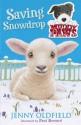 Muddy Paws: 4: Saving Snowdrop - Jenny Oldfield