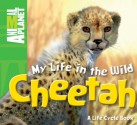 My Life in the Wild: Cheetah - Phil Whitfield, Animal Planet