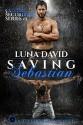 Saving Sebastian: A Catharsis Novel (Custos Securities Series Book 3) - Luna David, Book Cover by Design