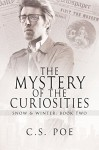 The Mystery of the Curiosities (Snow & Winter Book 2) - C.S. Poe