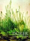 Durer and the Virgin in the Garden - Susan Foister