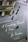 A Country Road, A Tree: A novel - Jo Baker