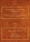 Brain Stimulation, Volume 116: Handbook of Clinical Neurology (Series editors: Aminoff, Boller, Swaab) - Andres M. Lozano, Mark Hallett
