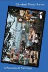 Cleveland Poetry Scenes: A Panorama & Anthology - Larry Smith, Mary E. Weems, Nina Freedlander Gibans