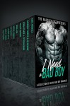 I Need A Bad Boy: A Collection of Bad Boy Romances - Sophie Brooks, Natasha Tanner, Beth Wynne, Kate Pavelle, Jenna Chase, Nora Ash, Nessa Connor, Molly Thorne, Leanne Brice, Lily Marie