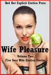 Wife Pleasure Volume Two: Five Sexy Wife Erotica Stories - Karla Sweet, Cassie Hacthaw, Kimmie Katt, Sarah Blitz, Jeanna Yung
