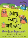 Hairy, Scary, Ordinary: What Is An Adjective? - Brian P. Cleary