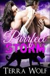 Purrfect Storm: (A Billionaire BBW Shifter Romance) (Purrfect Mates Book 2) - Terra Wolf, Misha Carver