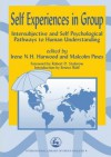 Self Experiences in Group: Intersubjective and Self Psychological Pathways to Human Understanding (International Library of Group Analysis) - Irene Harwood, Malcolm Pines, Robert D. Stolorow, Ernest Wolf