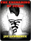 The Ensnaring of Susan and Other Tales of Women in the Toils of Love - Jay Lawrence