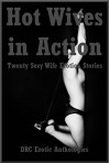 Hot Wives in Action: Twenty Sexy Wife Erotica Stories - Jeanna Yung, April Styles, Geena Flix, Morghan Rhees, Kaddy DeLora