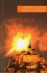 Obietnica anioła/Wyznania Gejszy/Gliniana Biblia. Pakiet - Frédéric Lenoir, Violette Cabesos, Arthur Golden, Julia Navarro