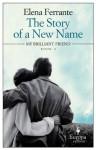 The Story of a New Name (The Neapolitan Novels) - Elena Ferrante