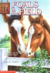 Foals In The Field - Ben M. Baglio, Helen Magee, Jenny Gregory