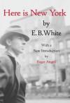 Here is New York - E.B. White, Roger Angell