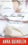 One True Thing - Anna Quindlen