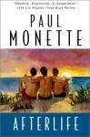 Afterlife - Paul Monette