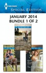 Harlequin Special Edition January 2014 - Bundle 1 of 2: Happy New Year, Baby Fortune!It Began with a CrushReid's Runaway Bride - Leanne Banks, Lilian Darcy, Tracy Madison