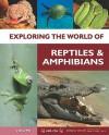 Exploring The World Of Reptiles And Amphibians - Jen Green, Richard Spillsbury, Patricia Taylor, John P. Friel, Brown Reference/Tbd