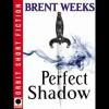 Perfect Shadow (Night Angel, #0.5) - Brent Weeks, James Langton