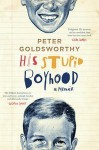 His Stupid Boyhood: A Memoir - Peter Goldsworthy