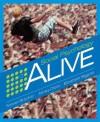 Social Psychology Alive [With CDROM] - Steven J. Breckler, Elizabeth C. Wiggins, James M. Olson