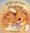 While You Were Sleeping (Orchard Picturebooks) - John Butler