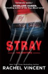 Stray (The Shifters) - Rachel Vincent
