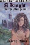 A Knight In The Dungeon - Sarah Winn