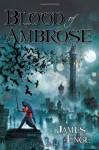 Blood of Ambrose - James Enge