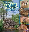 Whose Home Is This? - Julie Murphy