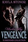 Under By Vengeance (Romantic Suspense Spies) (Surrender Collection Book 3) - Kayla Stonor, Travis Luedke