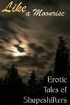 Like a Moonrise: Erotic Tales of Shapeshifters - Artemis Savory, Cecilia Tan, MeiLin Miranda, Catt Kingsgrave, Marie Carlson, Kyell Gold, Rakelle Valencia, Aoife Bright
