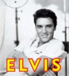 Elvis: His Life in Pictures - Todd Morgan