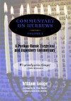 Commentary on Hebrews: Exegetical & Expository - Vol. 1 (PB) - William Gouge, Peter Masters, Joel R. Beeke