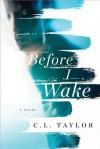 Before I Wake - C.L. Taylor