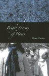 Bright Scarves of Hours - Diane Tucker